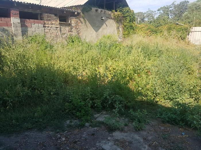 Продажа Дома от представителя хозяина (без комиссионных): 20 кв. м., 2 комнаты. Photo 4