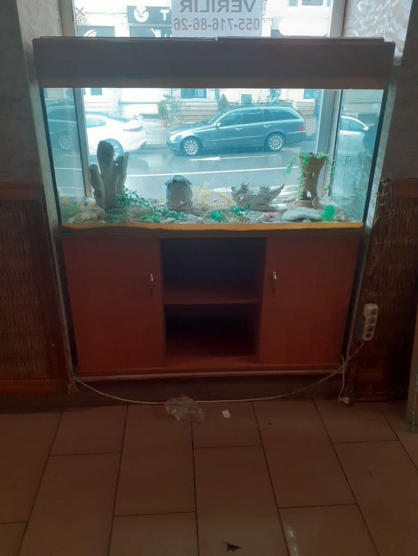 Akvarium satilir 2 ededdir: Akvarium satilir 2 ededdir