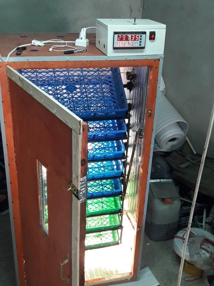 Inkubator. sifarisle yigilir. tam avtomatik is rejiminde isleyir. Photo 2