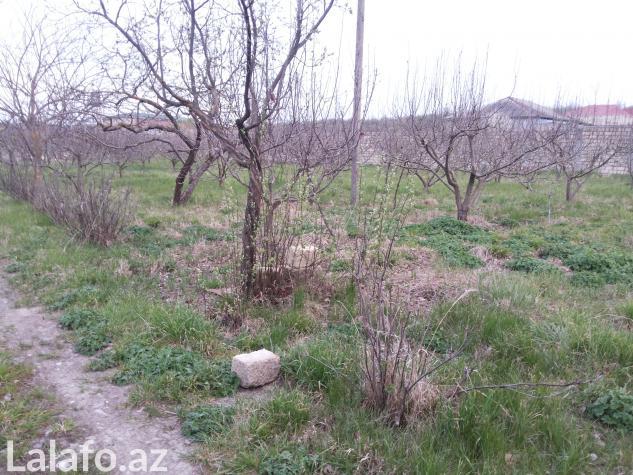 Quba şəhərində Quba, qəçrəş istirahət zonasında 80 sot torpaq sahəsi