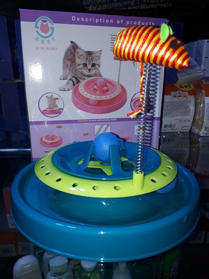 Pisikler ucun teze oyuncaqlar. Catdirilma movcuddjr. Photo 0