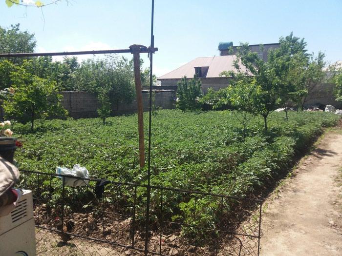 Другие товары для сада. Photo 1