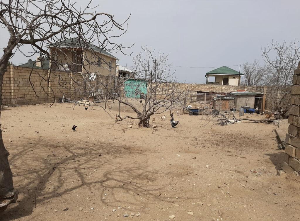 Torpaq sahələrinin satışı 6 sot Mülkiyyətçi, Kupça (Çıxarış): Torpaq sahələrinin satışı 6 sot Mülkiyyətçi, Kupça (Çıxarış)