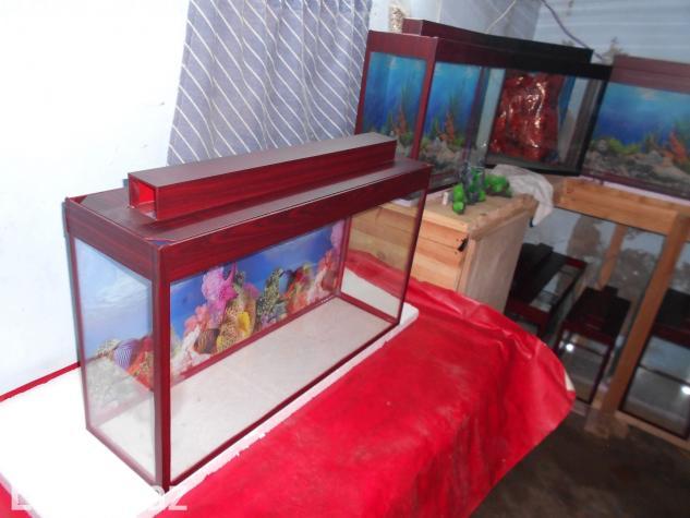 Akvarium qara ve mebel rengde . Photo 1