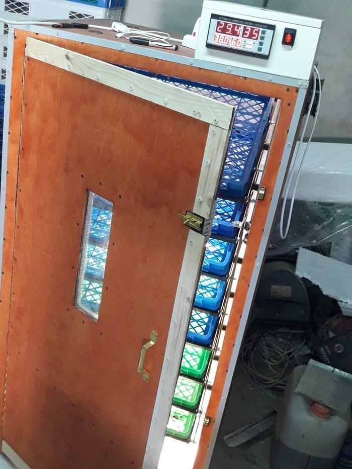 Inkubator. sifarisle yigilir. tam avtomatik is rejiminde isleyir. Photo 3