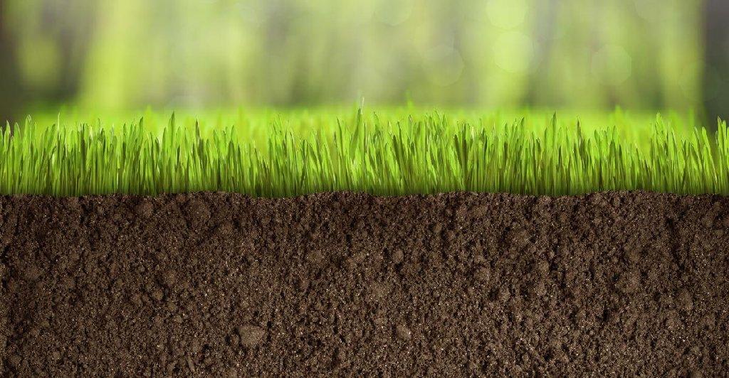 Растительный грунт, садовый грунт для газона клумб и огорода