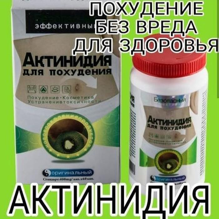 Таблетки для похудения актинидия