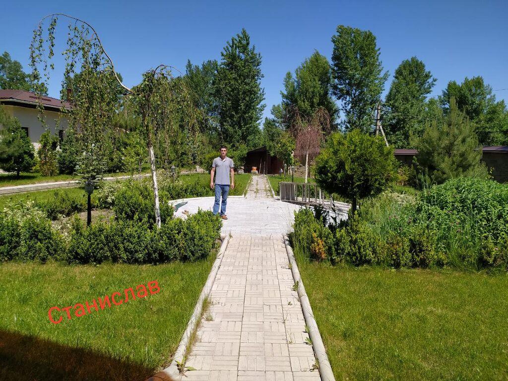 Обрезка и обработка хвойных деревьев опыт работы 18 лет. | 250 KGS ... | 768x1024