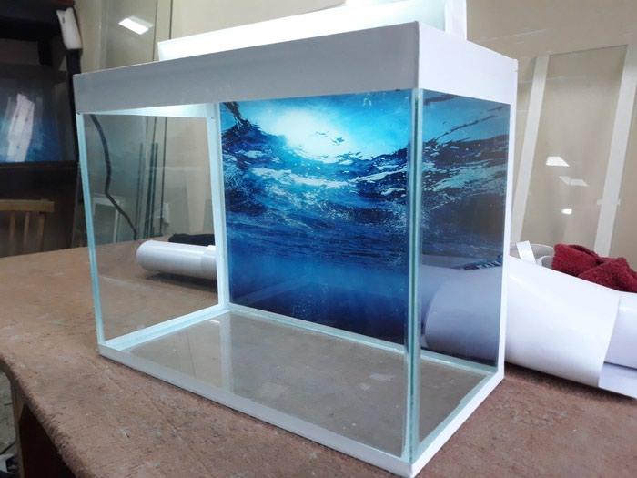 Teze akvarium. Photo 1