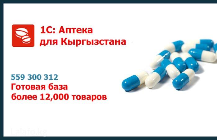 Установка 1С Аптека Для Кыргызстана.Готовая база более 12.000 в Бишкек