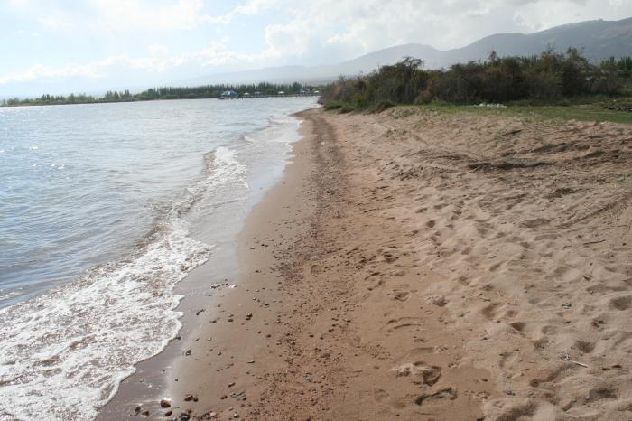 Продается участок 5га на Иссык-Куле, с. Чок-Тал, зеленая книга, под строительство тур. объектов легких конструкций с пляжно-парковой зоной в Чок-Тал