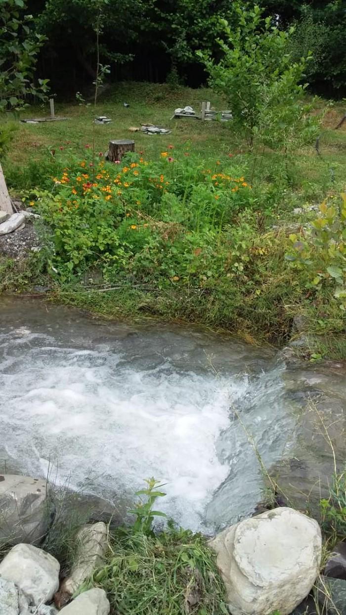 İsmayıllı rayonu buynuz kəndi nde gunluk kirayə evlər vatcap var. Photo 0