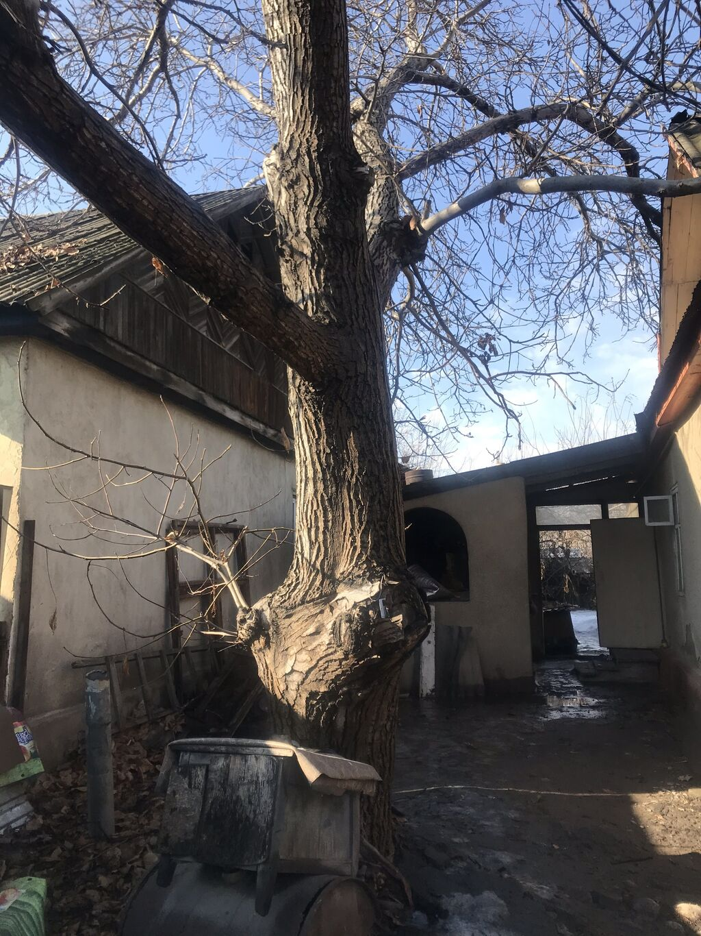 Другие пиломатериалы - Бишкек: