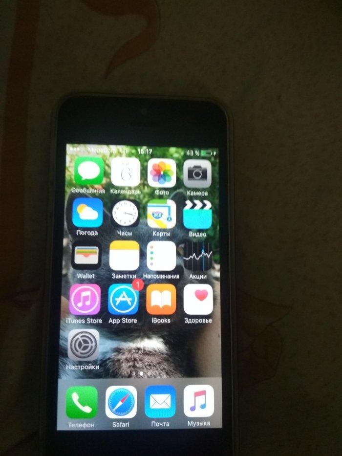 Продаю айфон 5s 16 гиг состояние в Лебединовка