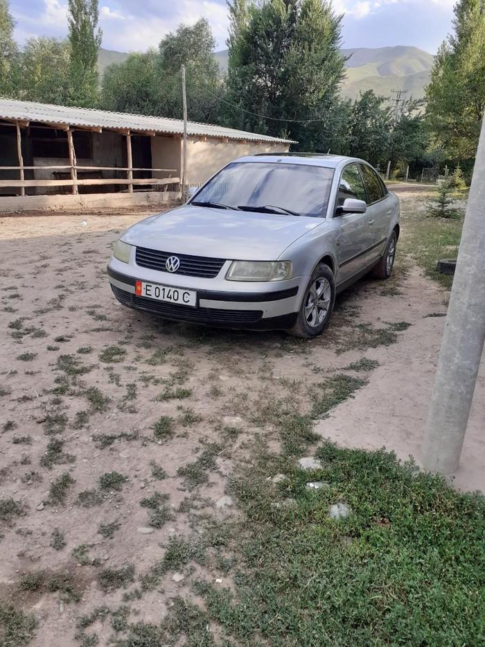Volkswagen Passat 1997. Photo 6