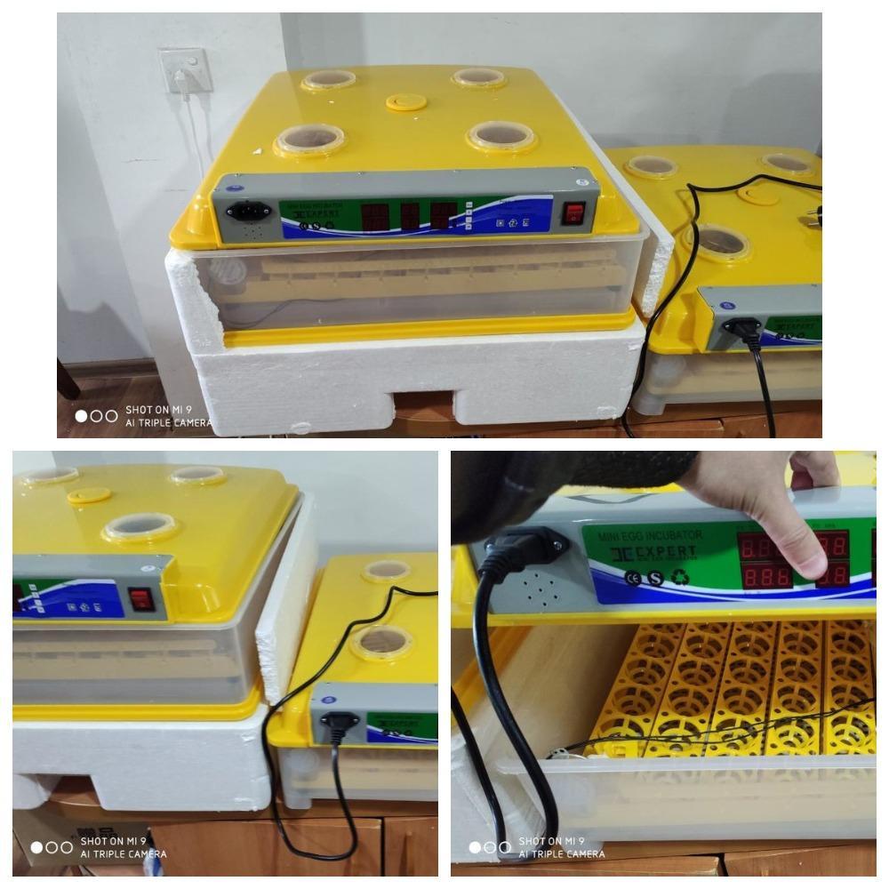 98-196 lıq inkubator