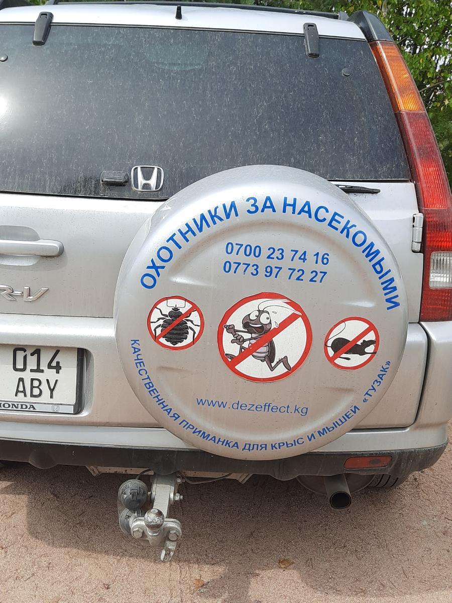Дезинфекция г.Бишкек